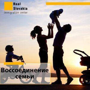 воссоединение семьи в словакии