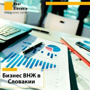 ВНЖ в Словакии через бизнес