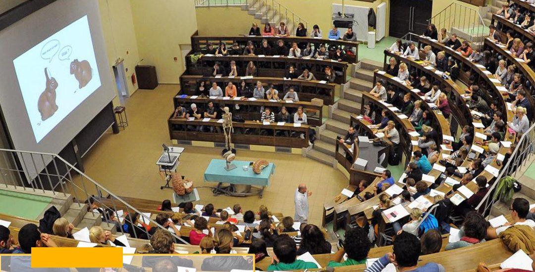 Трнавский университет в Словакии